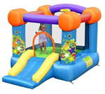 Party Bouncer with Slide
